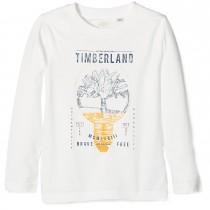 Футболка Timberland T25M04-117
