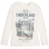Футболка Timberland T25M11-117