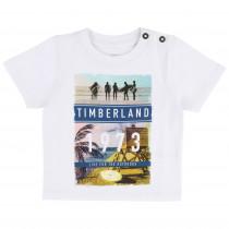 Футболка Timberland T05G95-10B