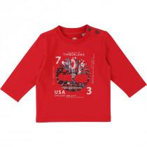 Футболка Timberland T05H23-971