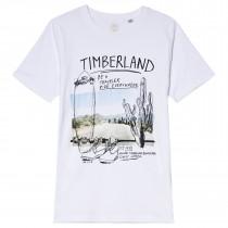 Футболка Timberland T25M67-10B
