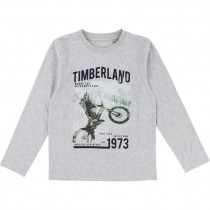 Футболка Timberland T25N10-A32